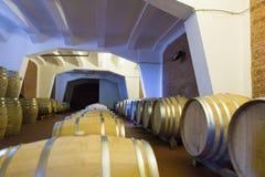 3d tło baryłki modelują biały wino Fotografia Royalty Free