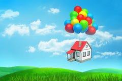 3d tolkningen a skriver röd-taklade husflugor som hänger på många kulöra ballonger över ett grönt fält royaltyfri foto