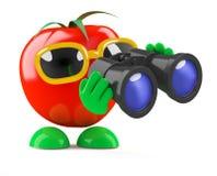 3d Tomaat kijkt door verrekijkers Stock Fotografie