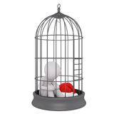 3d toon figure with Santa hat in bird cage. Captive 3d toon figure with Santa hat sat in bird cage on white Stock Photos