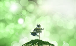 3D tree on a hill against a defocussed background Stock Photos