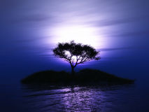 3D tree on an island against a sunset sky. 3D render of a tree on an island against a purple sunset sky Stock Photos