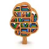 3d Tree of knowledge. Bookshelf on white. Stock Photos