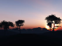 3D tree landscape against a sunset sky Royalty Free Stock Images