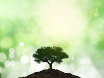 3D tree on a mound of soil against a bokeh background Stock Photography