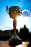 d'or trophée à l'extérieur Image libre de droits