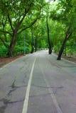 Długa droga Zdjęcie Royalty Free