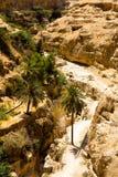 Długa droga w pustyni w wadim Qelt, Judejska pustynia Zdjęcia Stock