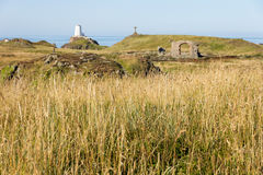 Długa trawy Llanddwyn wyspa Fotografia Stock