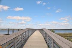 Długi drewniany, dok prowadzi out jezioro Fotografia Stock