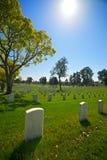 długi gravestones widok Zdjęcie Royalty Free