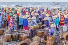 Długi Hai rybi rynek obrazy stock