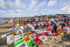 Długi Hai rybi rynek Obraz Royalty Free