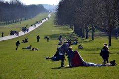 Długi spacer, Windsor Wielki park, Anglia, UK Zdjęcia Royalty Free