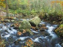 Długiego ujawnienia strumienia kaskady magiczna lasowa zatoczka w jesieni z s Obrazy Stock
