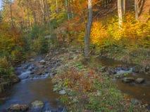 Długiego ujawnienia strumienia magiczna lasowa zatoczka w jesieni z kamieniami mo Zdjęcie Royalty Free