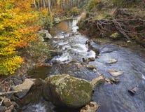 Długiego ujawnienia strumienia magiczna lasowa zatoczka w jesieni z kamieniami mo Zdjęcie Stock