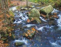 Długiego ujawnienia strumienia magiczna lasowa zatoczka w jesieni z kamieniami mo Fotografia Stock