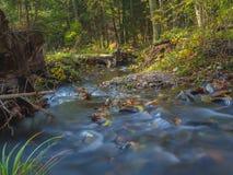Długiego ujawnienia strumienia magiczna lasowa zatoczka w jesieni z kamieniami mo Obrazy Royalty Free
