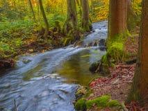 Długiego ujawnienia strumienia magiczna lasowa zatoczka w jesieni z kamieniami mo Obraz Royalty Free