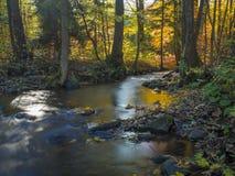 Długiego ujawnienia strumienia magiczna lasowa zatoczka w jesieni z kamieniami mo Zdjęcia Stock