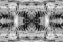 Dżungla abstrakt - zebra 2 Fotografia Stock