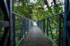 Dżungla most Obrazy Royalty Free