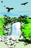 dżungli siklawa Obrazy Stock