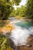 Dżungli siklawy Agua Azul Fotografia Royalty Free