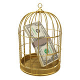 3d US Dollars in gold birdcage Stock Images
