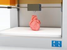 3d utskrivaven mänsklig hjärta Arkivfoto