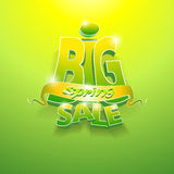 3d vector words big spring sale. On green background stock illustration