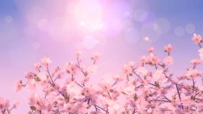 3D vintage style image of a Cherry blossom tree. 3D render of a vintage style image of a Cherry blossom tree Royalty Free Stock Photography