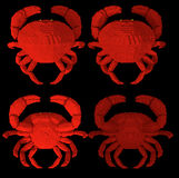 3d voxel crabs Royalty Free Stock Image