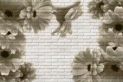 3d wallpaper, gerberas on white brick texture. The fresco effect. stock illustration