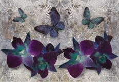 3d wallpaper, orchids and butterflies on lace, concrete wall textured background. The fresco effect vector illustration