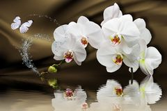 3d wallpaper, orchids reflected in water on silk background. Flower theme - this is a trend in design. Celebration 3d background stock image