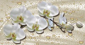 3d wallpaper, orchids, water drops on silk background. Celebration 3d background stock illustration