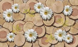 3d wallpaper, Tree Circle Texture and chamomiles, close-up. 3d wallpaper, chamomiles on wooden background. 3d background, tree circle texture and chamomiles stock photo