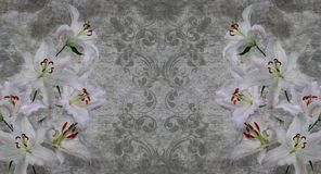 3d wallpaper, white lilies on concrete wall textured background. The original panel will turn your room in with the most recent world trends in interior fashion stock image