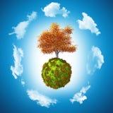 3D Walnut tree on grassy globe Stock Photos