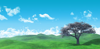 3D Widescreen tree landscape Royalty Free Stock Image