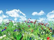 3D wild flower landscape. 3D render of wild flowers against a blue sky Royalty Free Stock Image