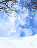 3D winter tree on snowy background. 3D render of a winter tree on a snowy background Royalty Free Stock Photography