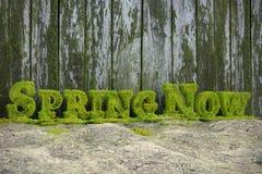 3D wiosny Teraz Świeży tekst Obraz Royalty Free