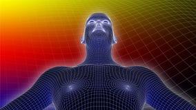 3D Wireframe Na Multicolor tle istota ludzka Obraz Royalty Free