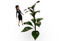 3d woman with big plant concept Royalty Free Stock Photography