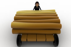 3d woman draw timber on hand truck concept Royalty Free Stock Photos