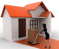 3d woman drive handtruck with box into house concept Stock Photography