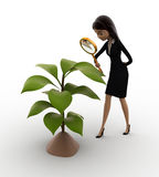 3d woman examine plant of tree concept Stock Photography